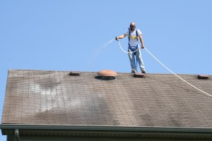 roof cleaning auburn